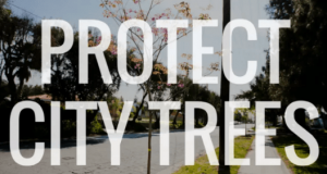 protect_city_trees
